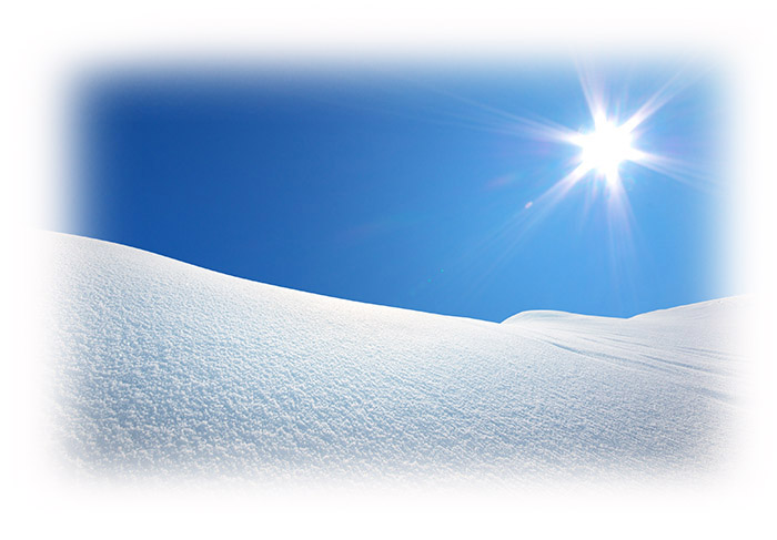 Ruchweid Winterbild