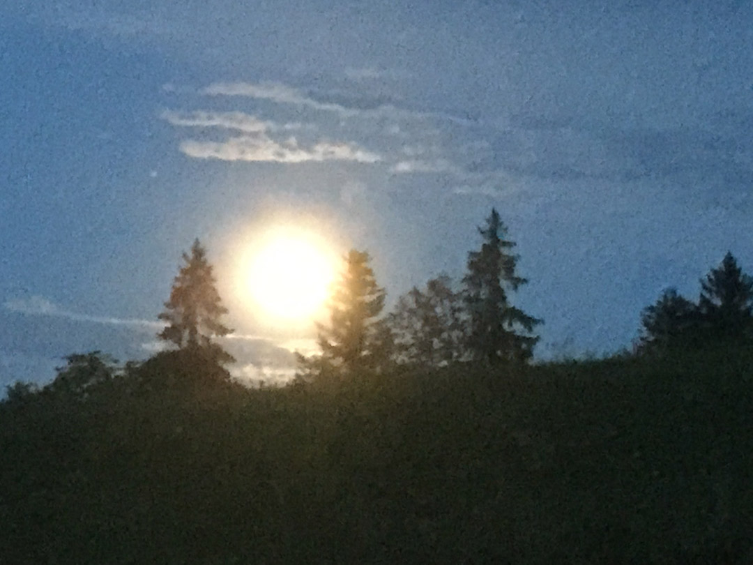 Vollmond 31. Juli 2015.