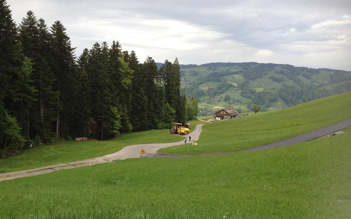 Ein Blick, hinunter ins grüne Toggenburg.