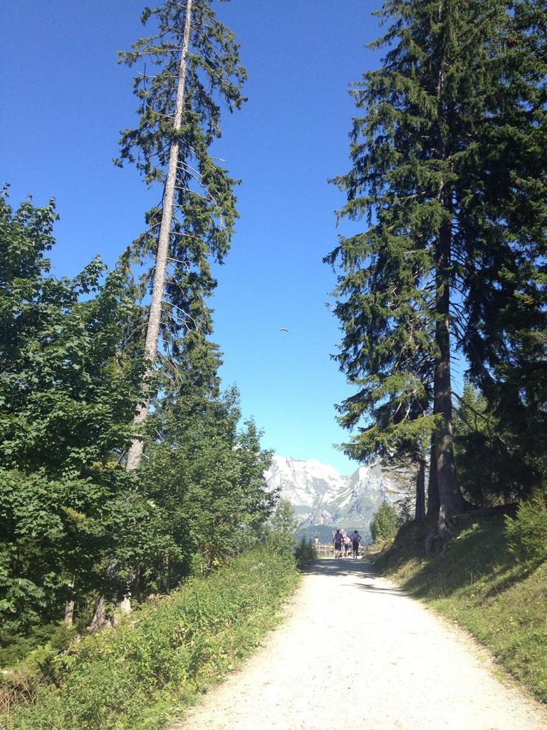 Ruchweid Klangweg-Wanderung